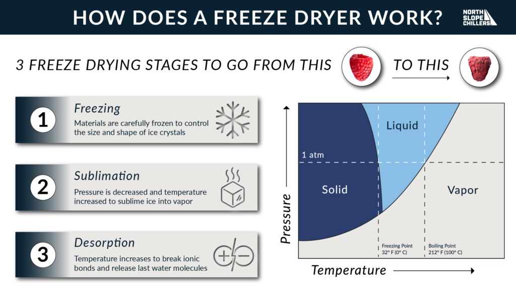 North Slope Chillers graphic on the stages of freeze drying
